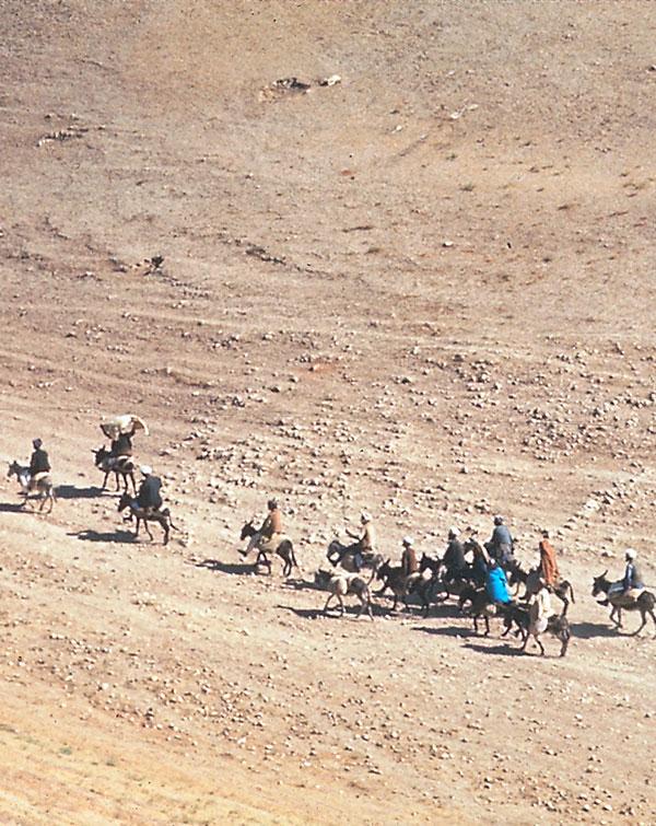 Karawane in Afghanistan
